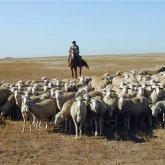 Обнародована удручающая статистика по доходам жителей южных регионов Казахстана