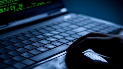 Хакера из Казахстана, разыскиваемого Австрией, задержали в Санкт-Петербурге