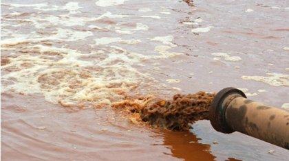 Слив фекалий в Иртыш ужаснул казахстанцев
